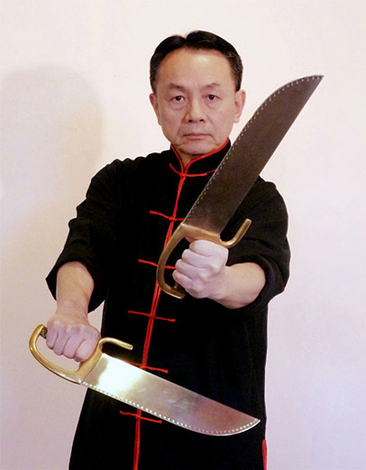 Image result for Wing Chun master pic